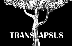 Translapsus